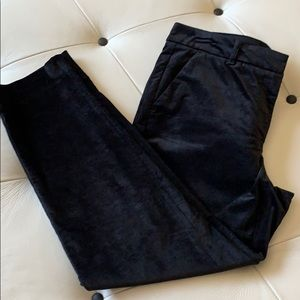 White House Black Market velvet ankle pant